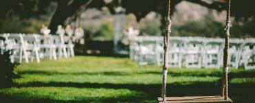 Schattenrasen, Preise, Pflegetipps und Vorteile