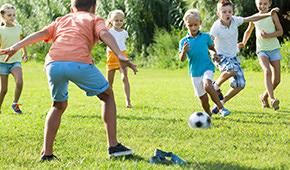 Sport- und Spielrasen Rollrasen