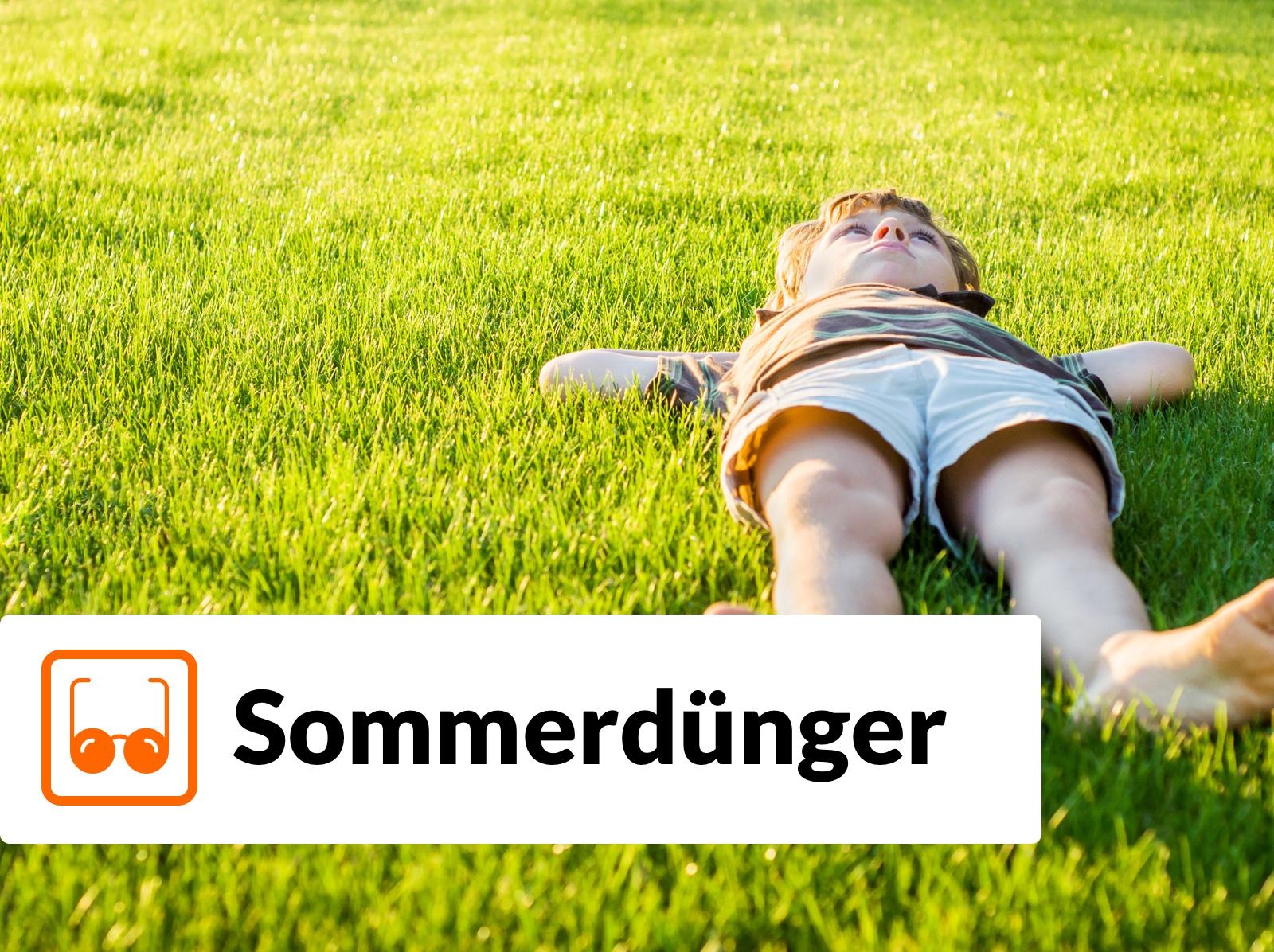 Rollrasen Rudi Rasen Sommerdünger