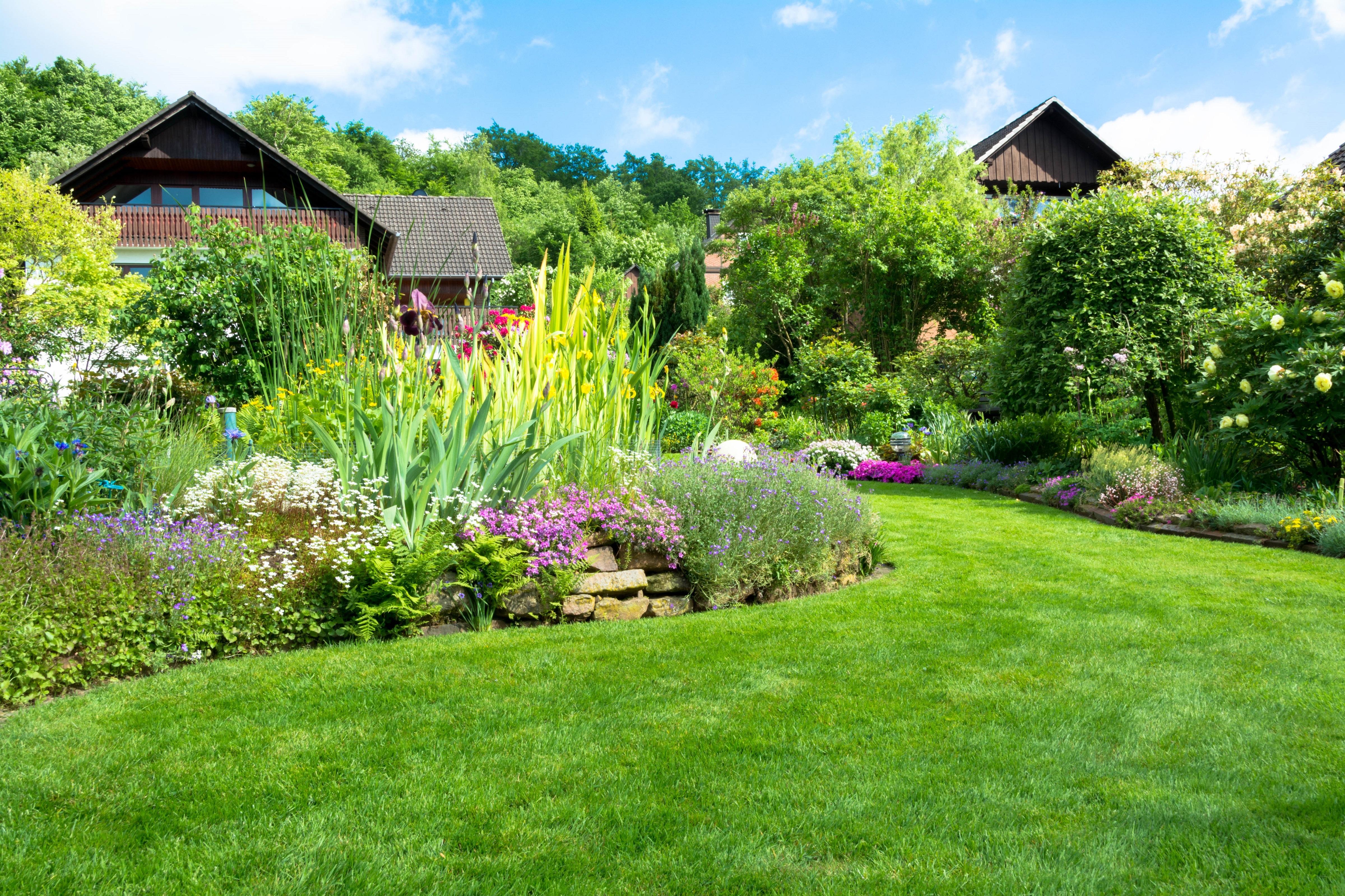 Schönster Rasen der Nachbarschaft