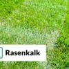 Rollrasen Rudi Rasenkalk Gartenkalk