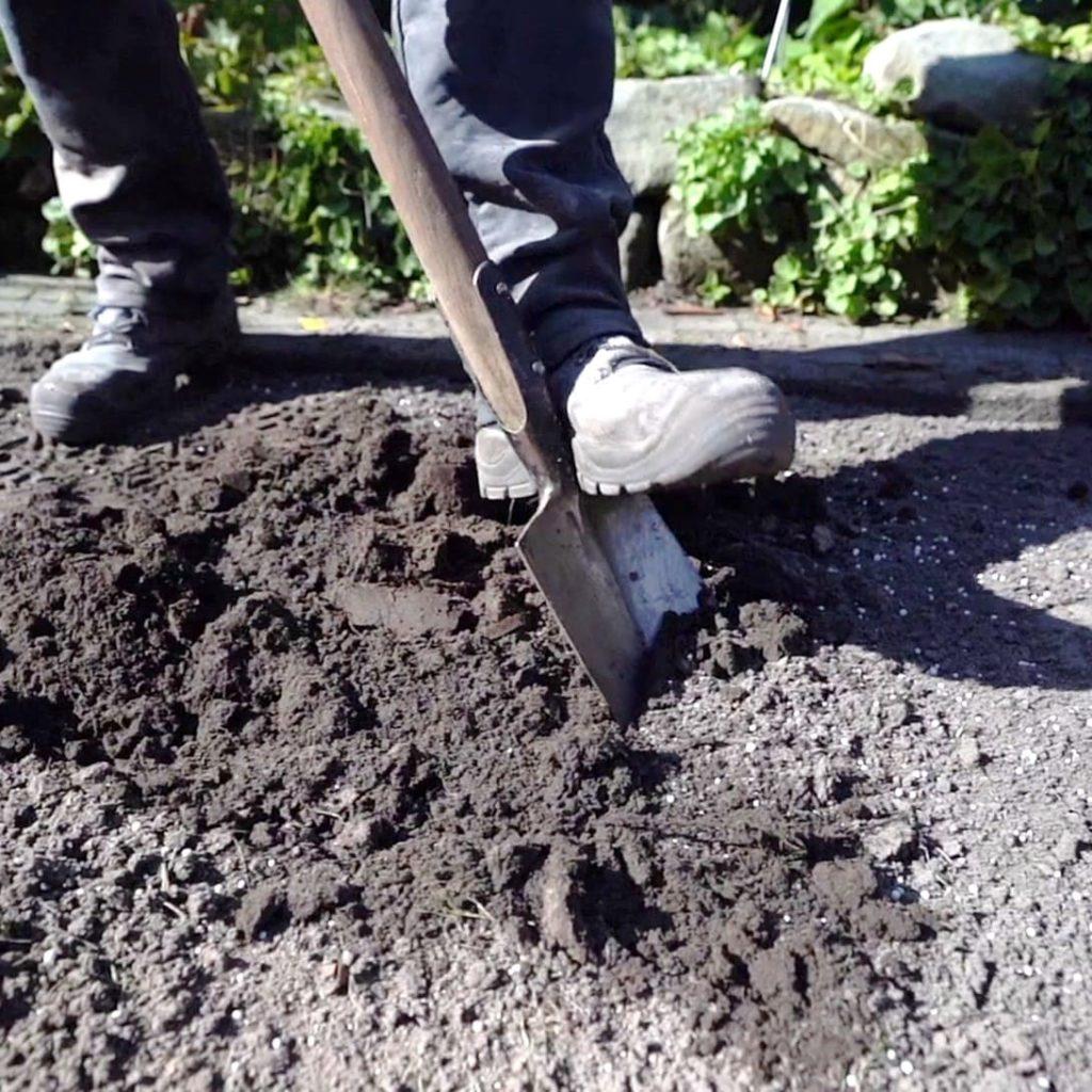 Boden auflockern (mit Spaten umgraben)