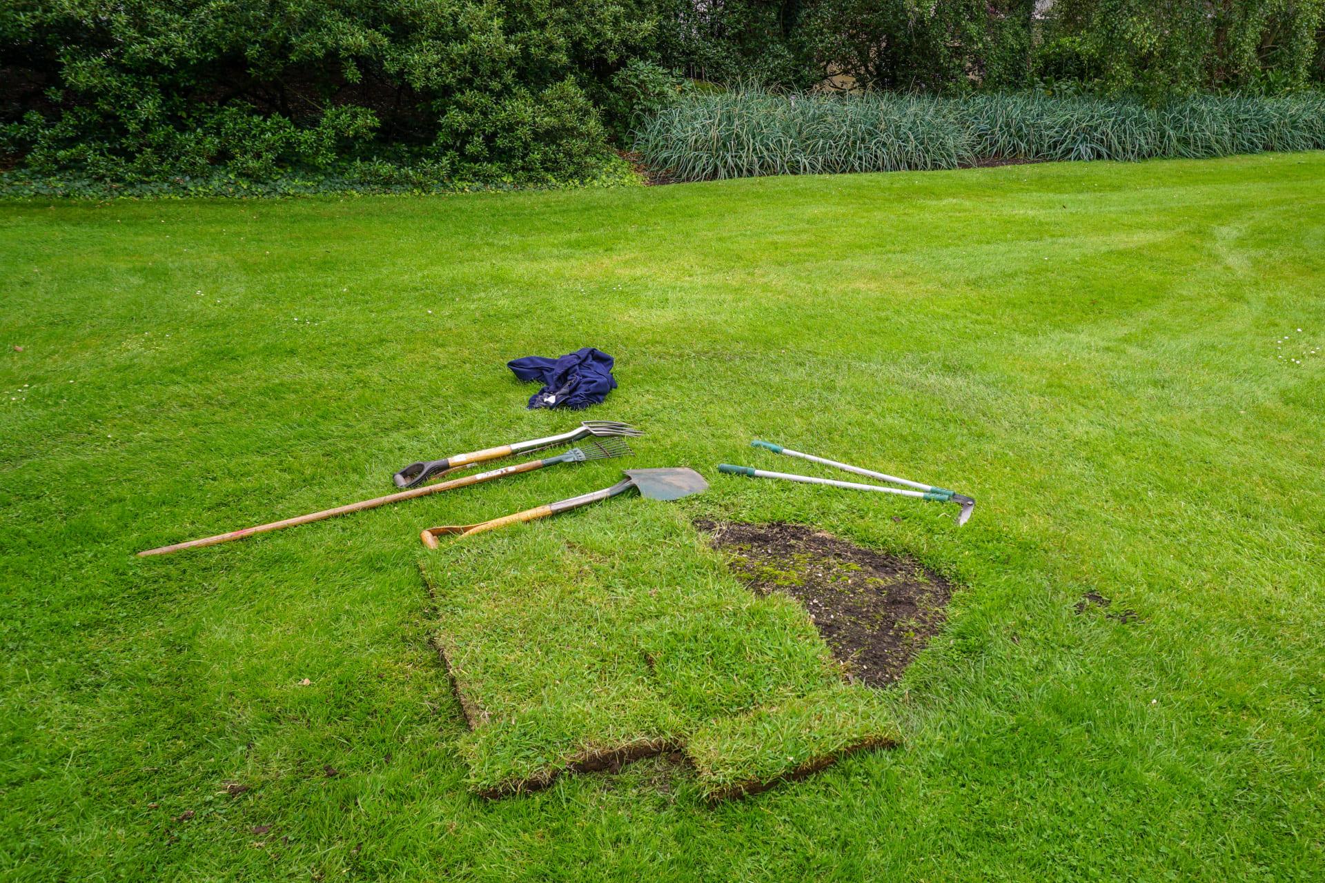 Grasssoden / Rasensoden entsorgen